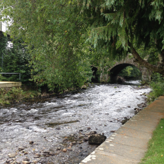 Avoca-Meeting of the Waters 4