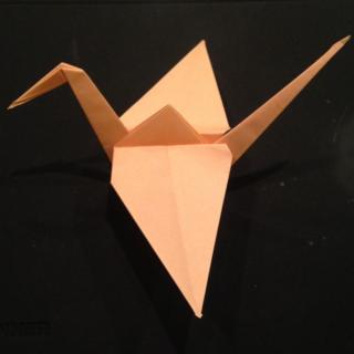 A Plain Crane
